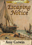 Escaping Notice